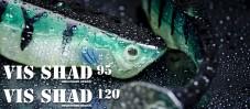 Vis Shad