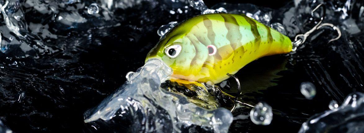 fcrank dr 125 sunfish