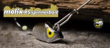 rs-spinnerbait