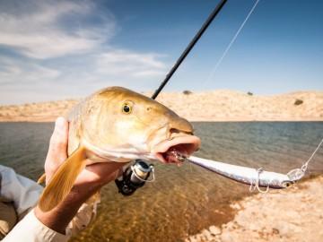 freshwater flats fishing