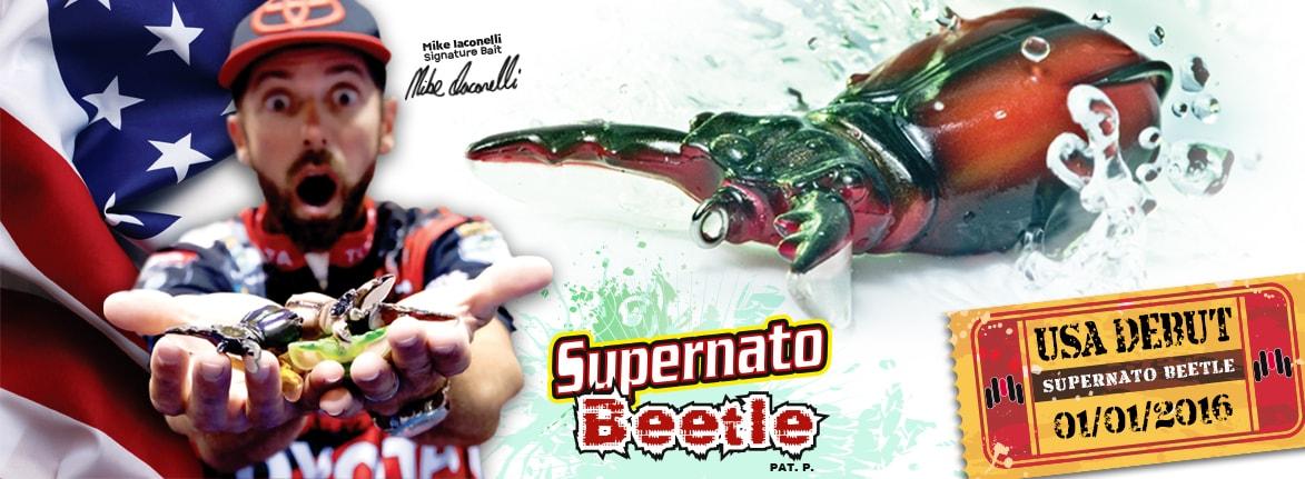 Supernato Beetle