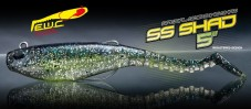 SS Shad 5