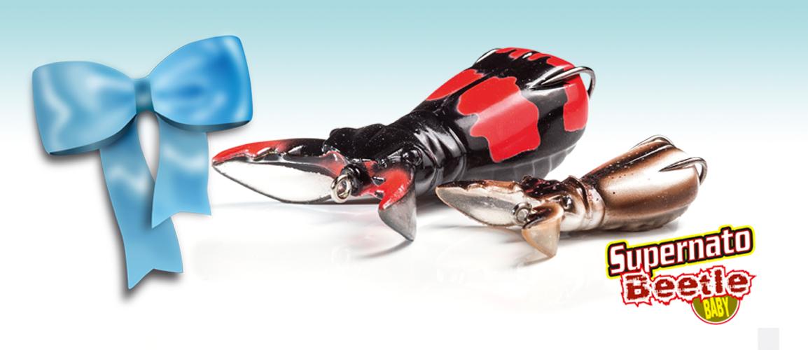 Molix-Home Supernato Beetle Baby
