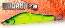 Brigante 160F