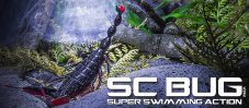 SC Bug