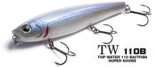 TW 110B