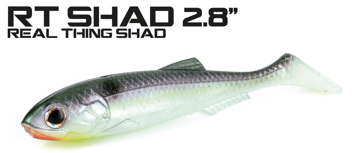 RT-Shad-28