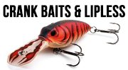 Crank Baits & Lipless