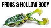 Frogs & Hollow Body